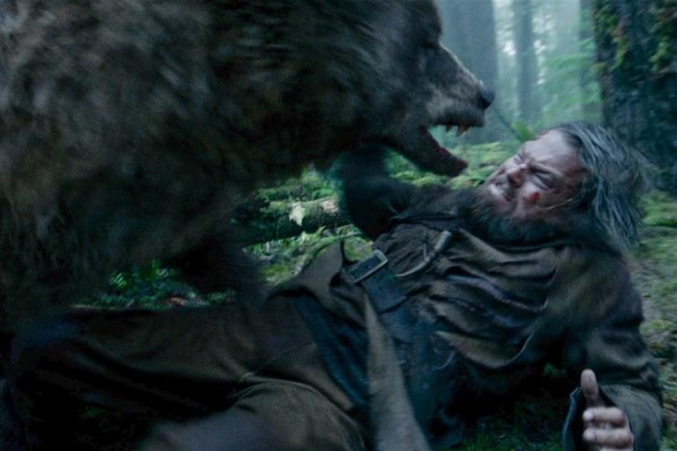 the-revenant bear